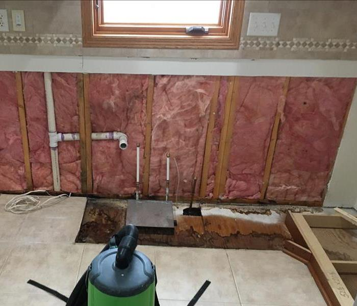 Mold Remediation in Alexandria Home After