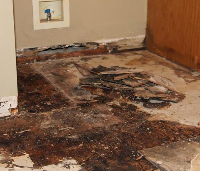 Water Damage No Matter the Cause, We Can Help