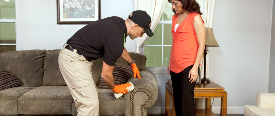 Alexandria, MN carpet upholstery cleaning